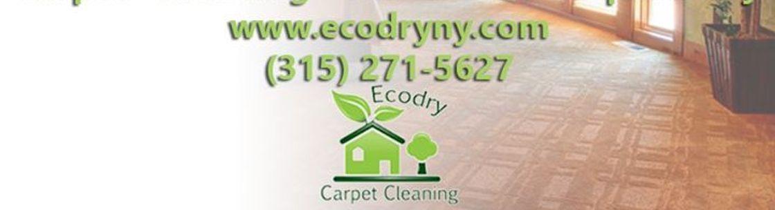 Ecodry Carpet Cleaning Rome Ny