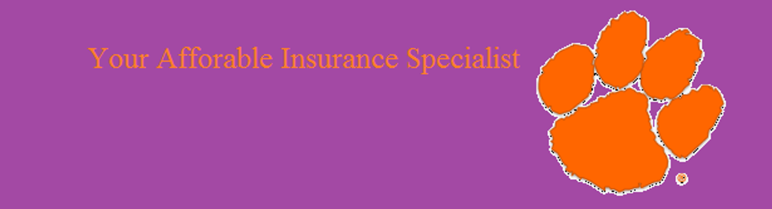 Best Buy Insurance >> Best Buy Insurance And Financial Services Clemson Alignable