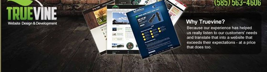 Truevine Web Design Rochester Ny Alignable,Design Your Own Computer Case Online