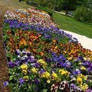 Sweet Peet Mulch By Garden Magic Dba Country Caretaker In Canaan