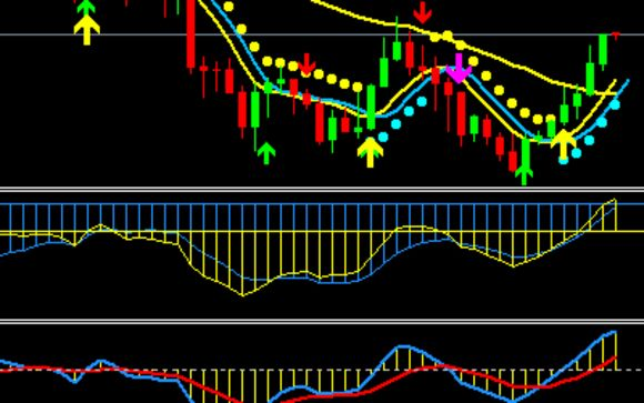 Forex training miami investing in stocks chapter 12 answers