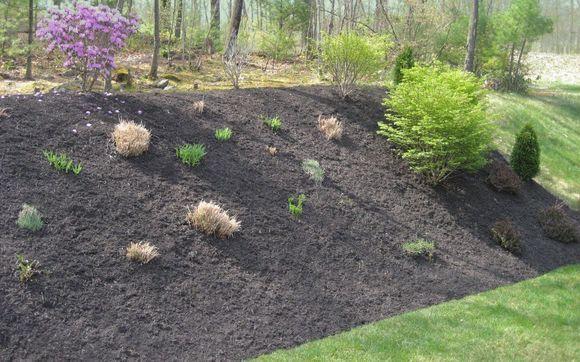 Mulch Garden Beds By Corning Landscape In South Grafton Area