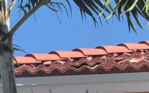 Tile Roofs By Pink Eagle Roofing In West Palm Beach Fl Alignable