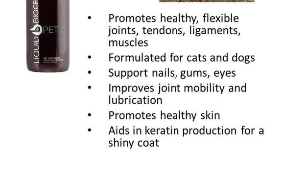 A Health and Wellness Co. - Palm Bay, FL - Alignable